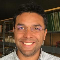 Davide Lorenzone