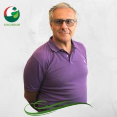 Mauro_Vergari
